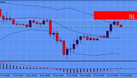 OUTLOOK  SUL CAMBIO VALUTARIO  EUR/USD