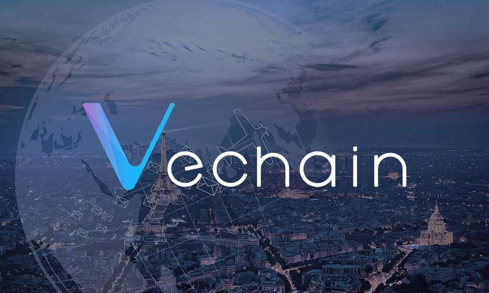 Ivy Crypto of the Week – VeChain